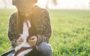 Az állathamvasztás előnyeiről bővebben